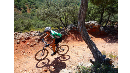 Port d´es Torrent (BTT)