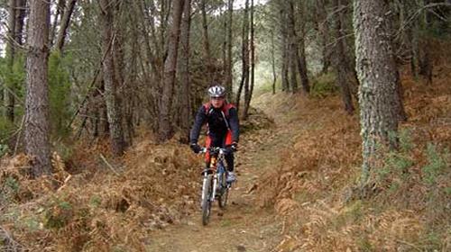 Sant Josep Xtreme (BTT)