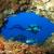 Las mejores imágenes del mar de Formentera
