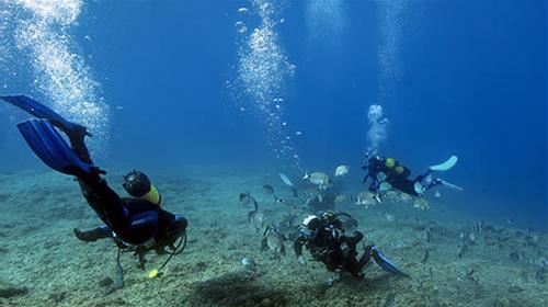 Bucear en Ibiza y Formentera