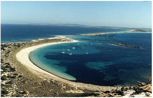 Playa s´alga