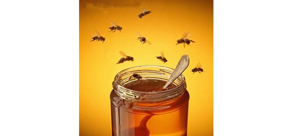 «La mejor miel es de Formentera»